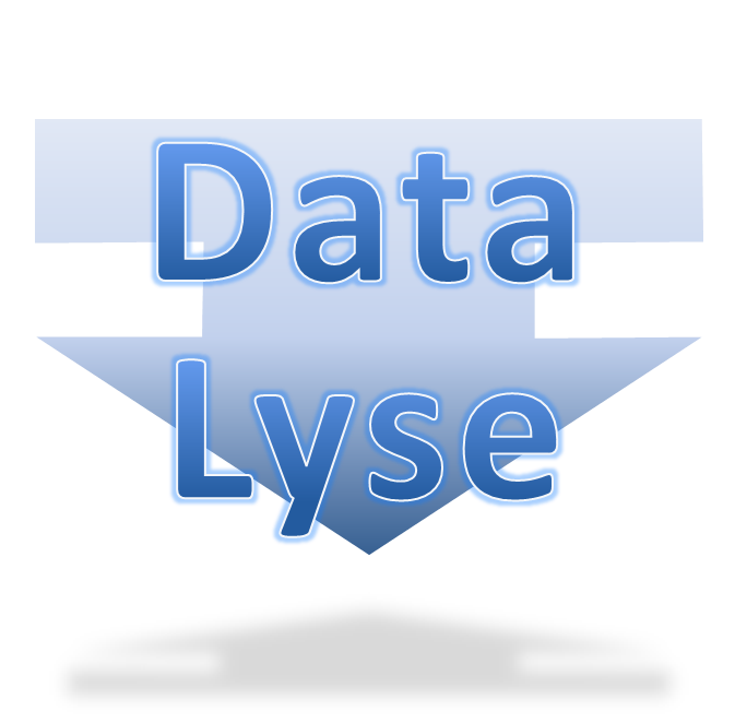 Datalyse, Interim Management and Business Analysis and software development